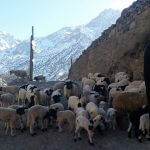 Berber Villages trekking