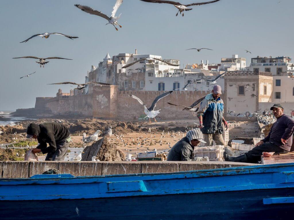 Essaouira City day trip