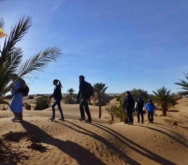 Camel trek experience - erg chegaga