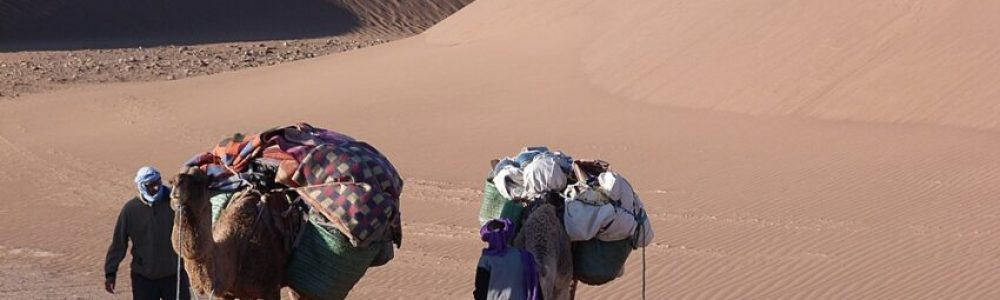 Camelters settled the camp - trekking in cheggaga desert
