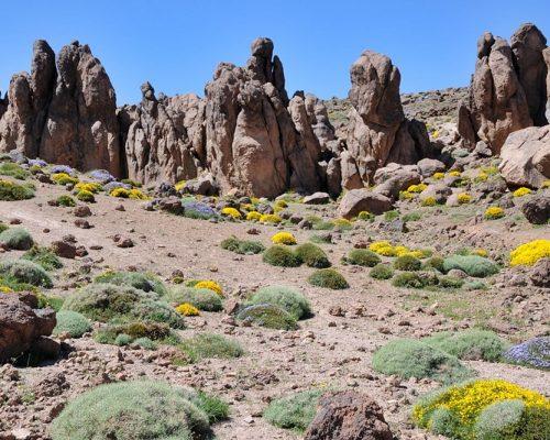 Siroua Treks - Anti-atlas Mountains Tours