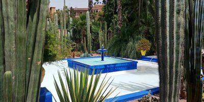 the Majorelle Garden day trips from Marrakech